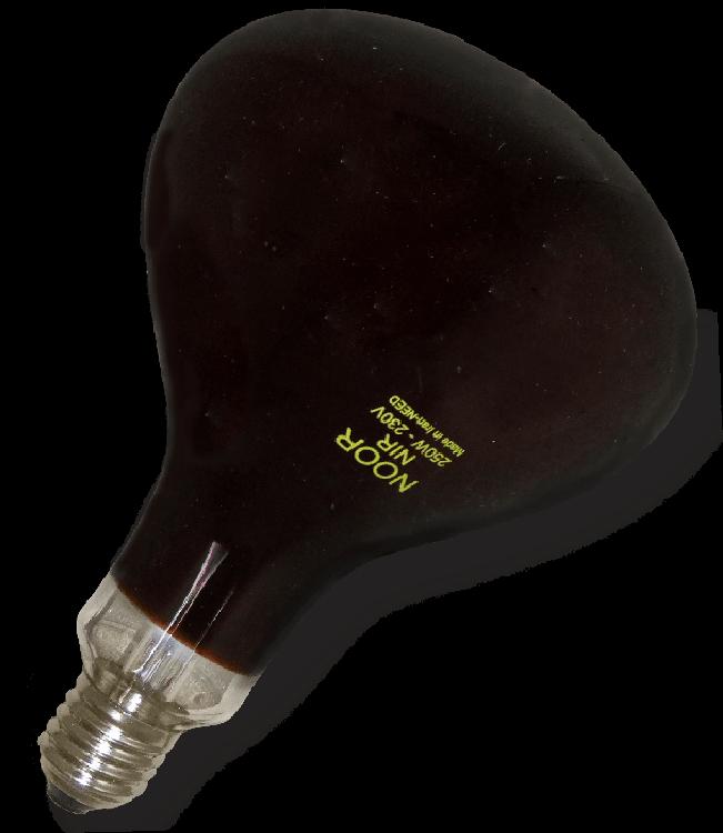 لامپ 250 وات مادون قرمز نور